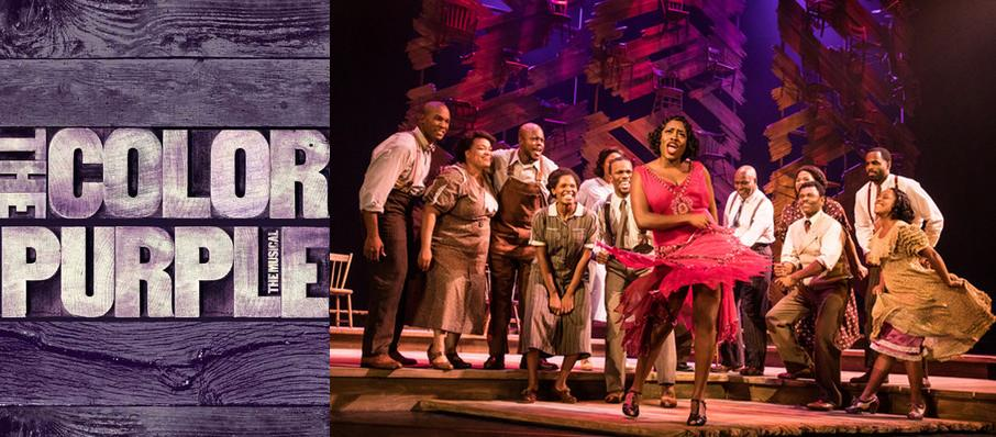 The Color Purple at Tilles Center Concert Hall