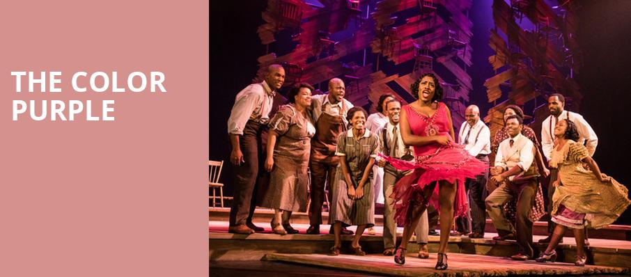 The Color Purple, Tilles Center Concert Hall, Greenvale